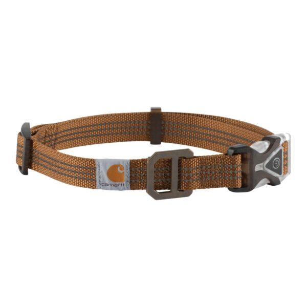 Carhartt - Hundehalsbånd med LED lys